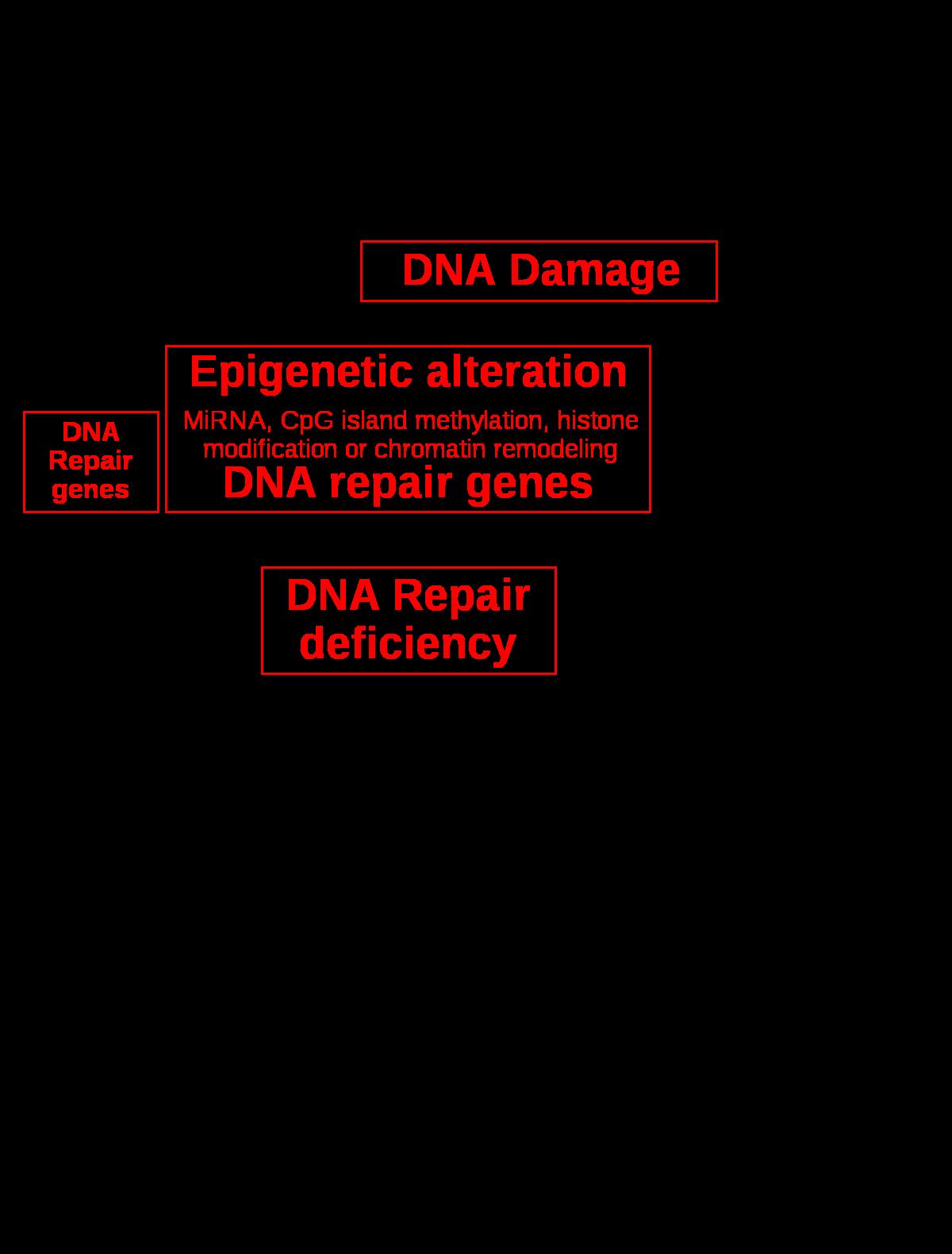 enterobiasis gpc