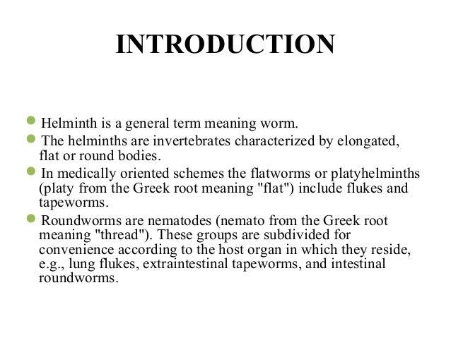 Opisthorchiasis helmintus