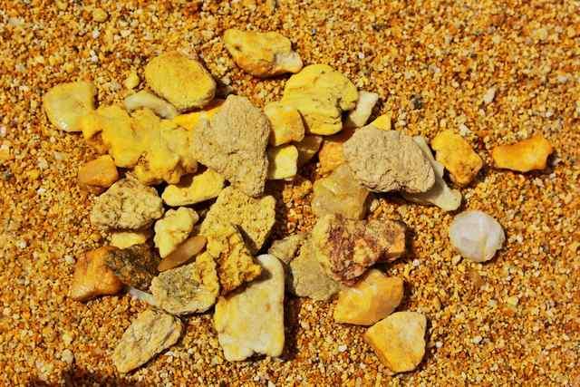 schistosomiasis akik papilloma és anyajegyek