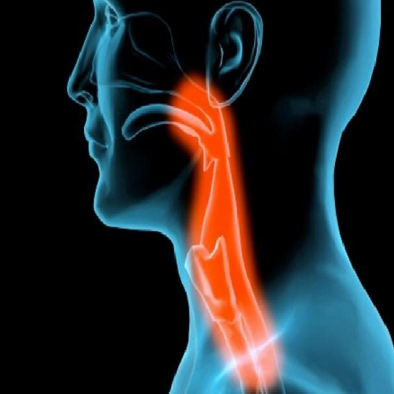 Nyelőcsőgyulladás tünetei és kezelése - HáziPatika
