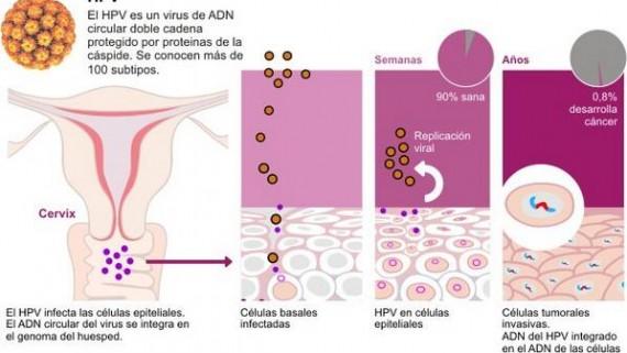Herpesz prosztatagyulladásban