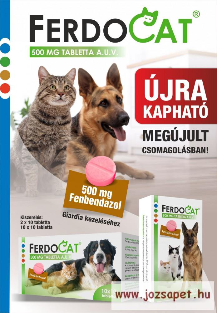 Ferdocat tabletta 500 mg 1 levél