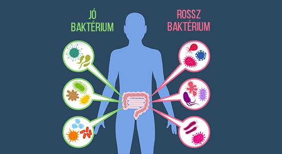 A Detox tisztítja a fogyás kiegészítőket, a fogyást és az étrendet