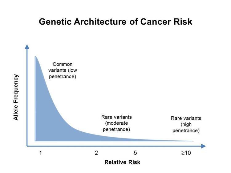 rák genetikai tanácsadója