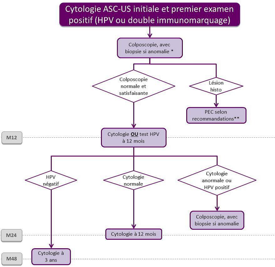 hpv frottis ascus hogyan kell kezelni az emberben a helminthiasist