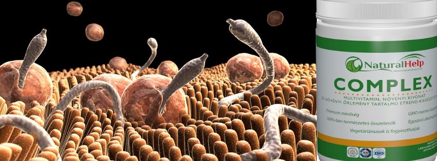 paraziták elleni amrit készítmények