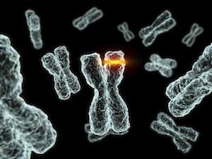 rák genetikai