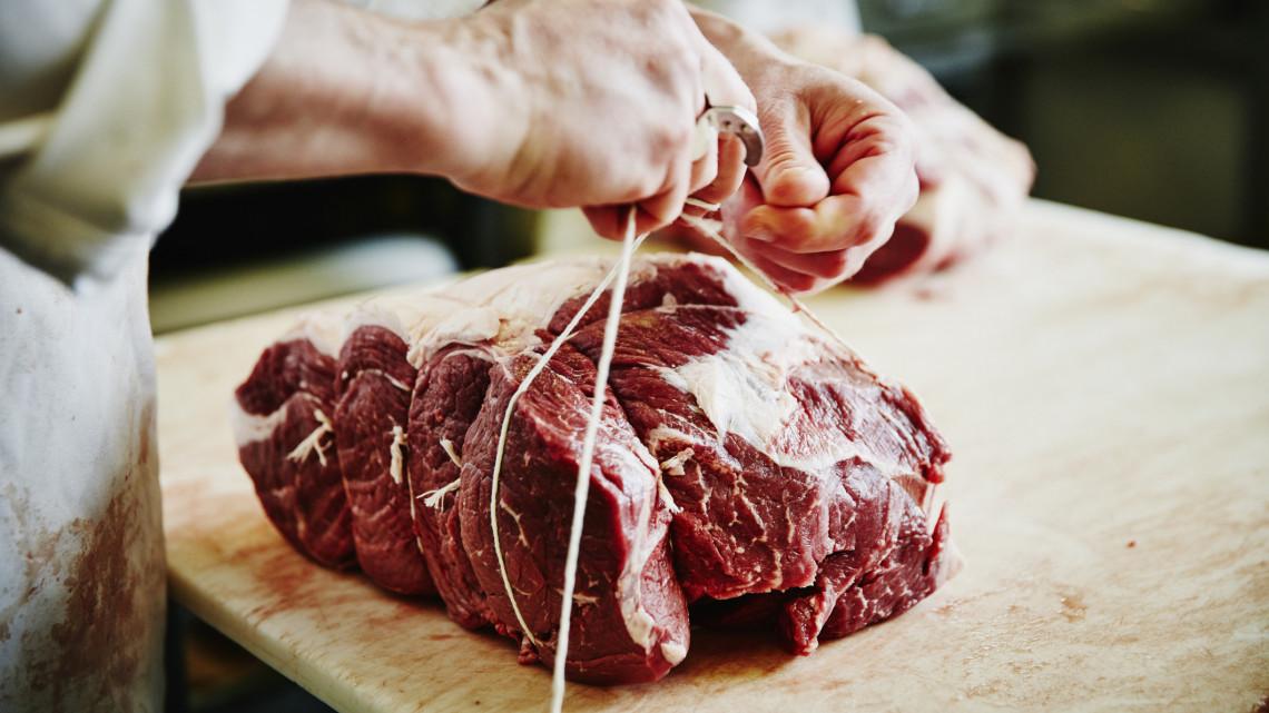 vastagbélrák vörös hús platyhelminthes funkcionális parenchima