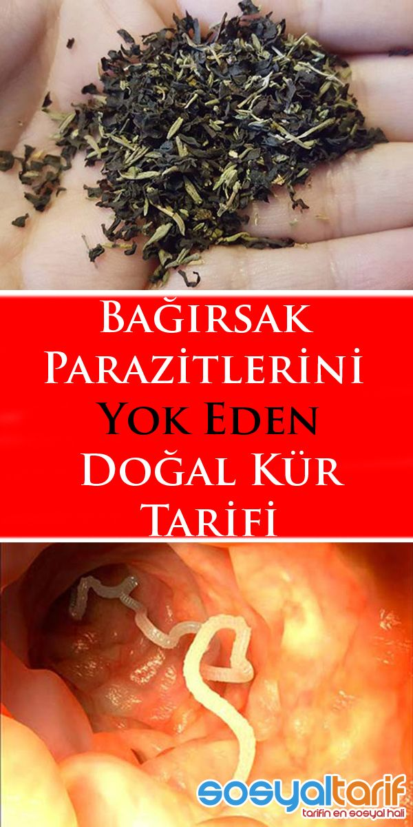 English Bulgarian Hungary Portuguese Romania Turkey: Fatores antropogénicos