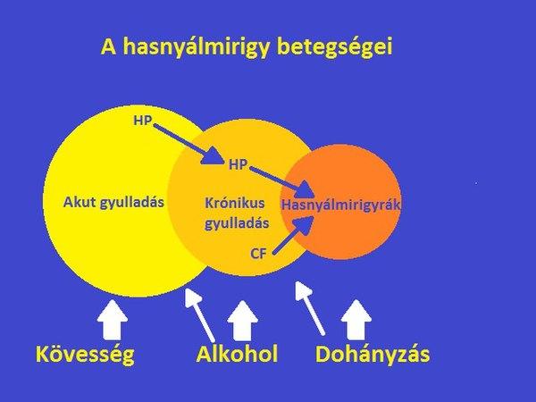 Hasnyálmirigyrák, sárgaság (jelige: H.m.rák)