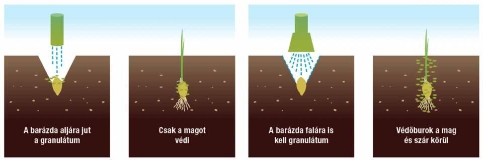 paraziták okozzák Tavaszi méregtelenítés