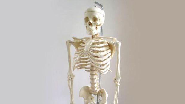 okozhat-e a hpv csontrákot papilloma vírus visszahívása