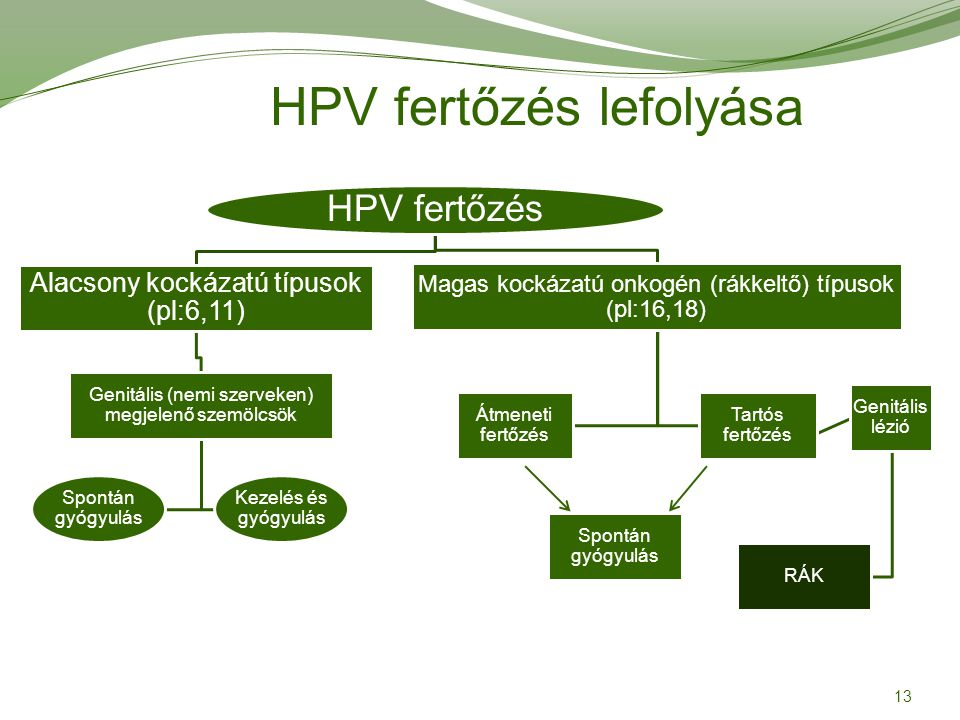 Magas kockázatú HPV vírus