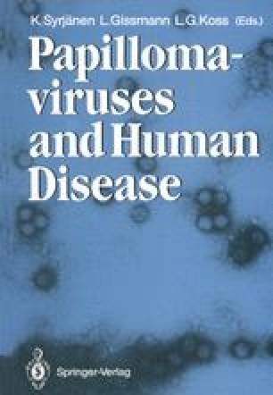 a papillomavírus nem kezel