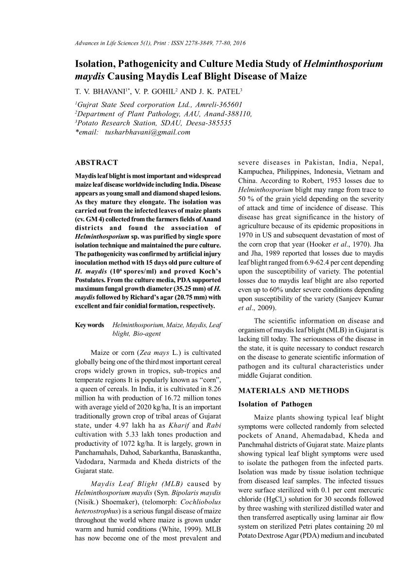verseny helminthosporium maydis t nemi szemölcsökről szóló gyógyszerismertetők